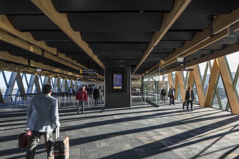 Wellington Havaalanı ek binası ahşap strüktür ve iç mekan