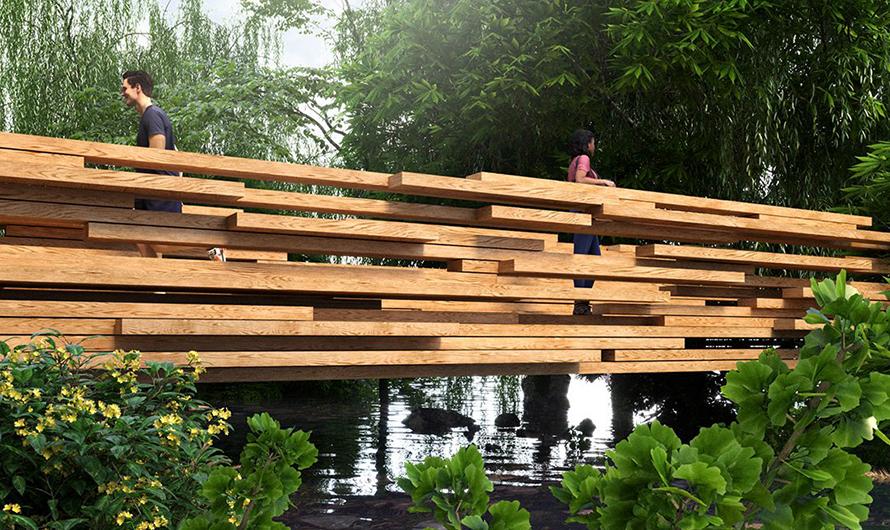 İstilacı Okaliptus Ağaçları ile Tasarlanan Köprü